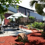 Cape-Fear-Winery-and-Vineyard-(3)